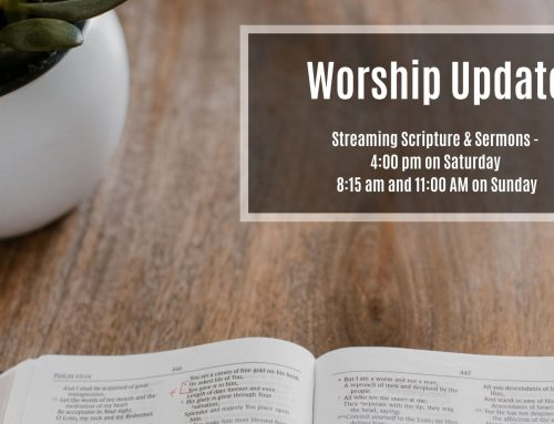 Worship – March 14th and 15th